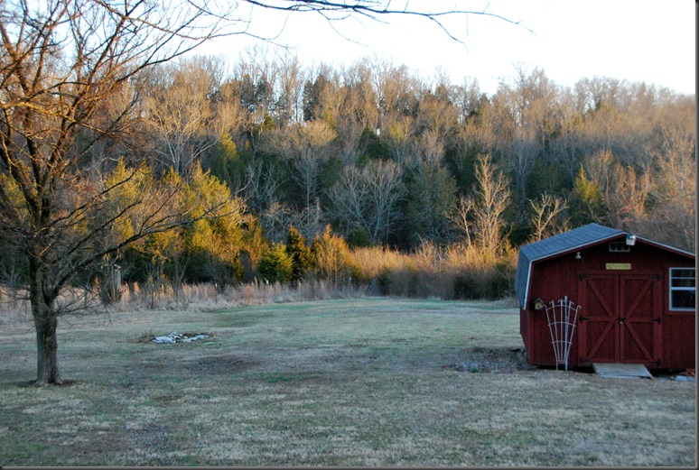 farm feb 27, 2014 lamp 033