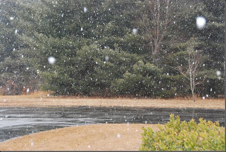 snow 2014 003