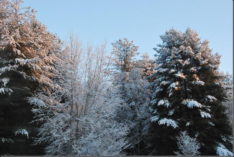 snow 2014 004