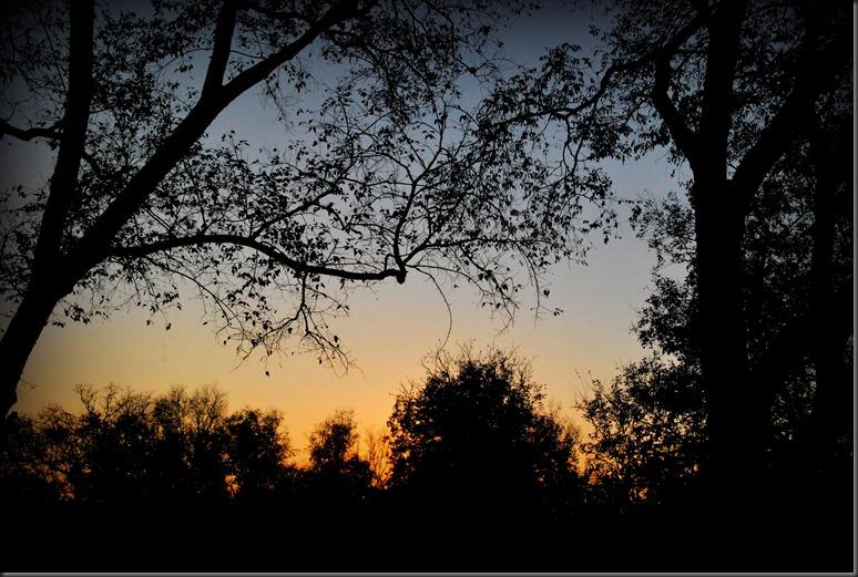 sunset oct 20, 2014 the farm 034